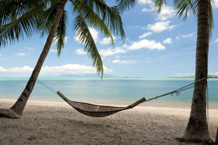 hammock meaning in english