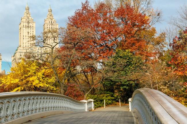 Offerte speciali di utat viaggi for Pernottamento new york